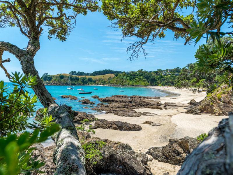 Auckland New Zealand Best Beach