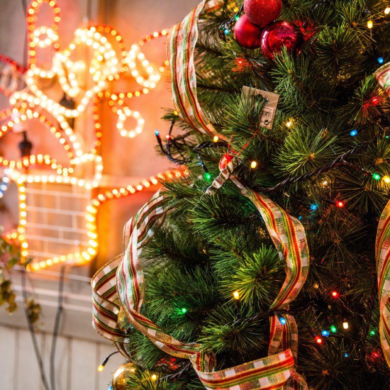 bright-celebration-christmas-688573